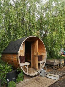 Dom z drewna - hit czy kit?
