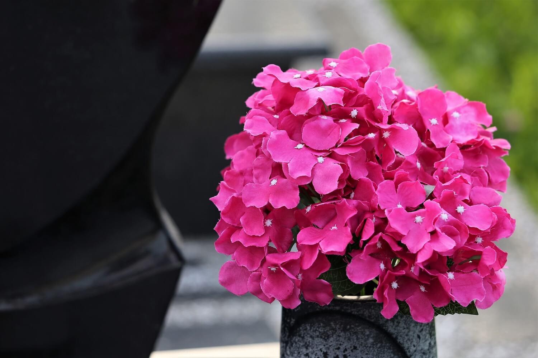 Jak odświeżyć sztuczne kwiaty?